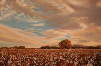 CottonFieldNovember